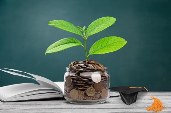 Eine Pflanze wächst im Glas voller Geld